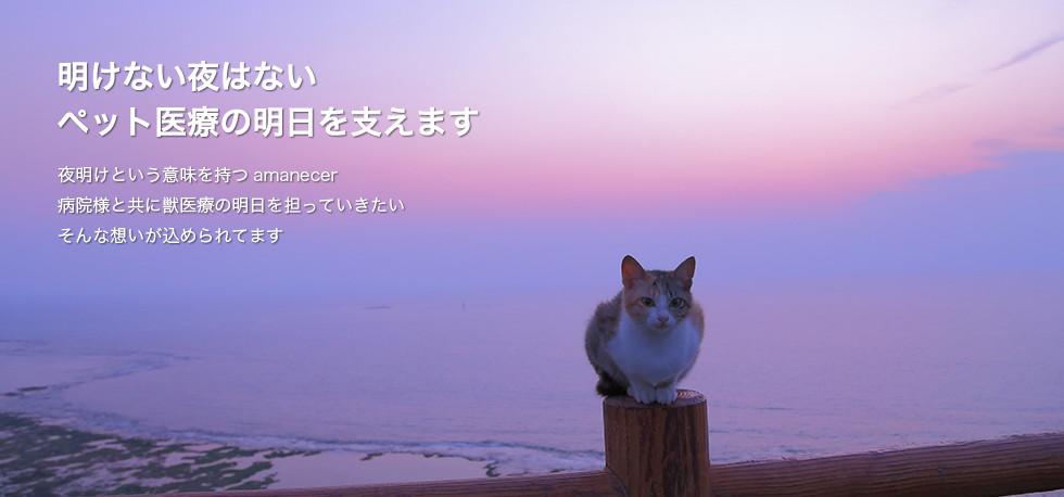 明けない夜はない ペット医療の明日を支えます -夜明けという意味を持つamanecer 病院様と共に獣医療の明日を担っていきたい そんな想いが込められてます-
