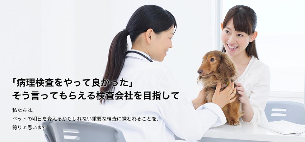 「病理検査をやって良かった」そう言ってもらえる検査会社を目指して -私たちは、ペットの明日を変えるかもしれない重要な検査に携われることを、誇りに思います-